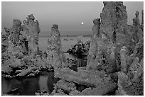 Tufa towers and moon, dusk. Mono Lake, California, USA (black and white)