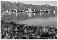 Grasses, tufa, and mountains, early morning. Mono Lake, California, USA (black and white)