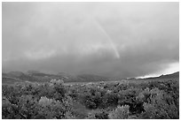 Rainbow and storm over Mono Basin, evening. Mono Lake, California, USA ( black and white)