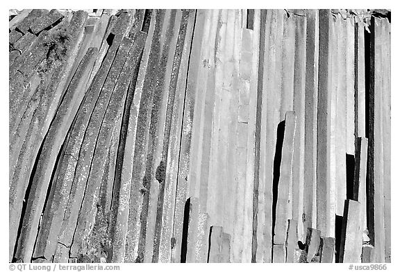 Hexagonal basalt colums, afternoon,  Devils Postpile National Monument. California, USA (black and white)