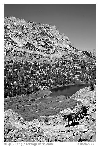 Horseback rider above Long Lake, Inyo National Forest. California, USA (black and white)