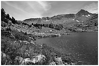 Indian Paintbrush and Saddlebag Lake, Inyo National Forest. California, USA (black and white)