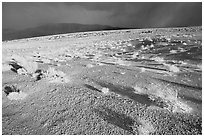 Basin with sage, Inyo Mountains  in stormy weather, late afternoon. California, USA (black and white)