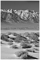 Sierra Nevada Range rising abruptly above Owens Valley. California, USA ( black and white)