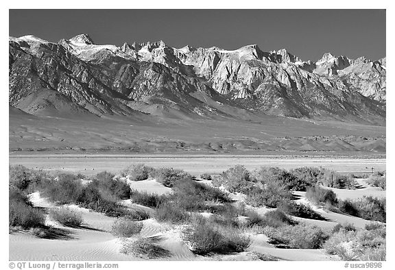 Sierra Nevada mountains rising abruptly above Owens Valley. California, USA (black and white)