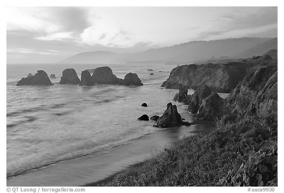 Coast with sea stacks near Rockport. Fort Bragg, California, USA (black and white)