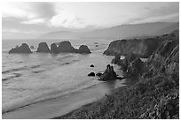 Coast with sea stacks near Rockport. California, USA (black and white)