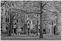 Courtyard and Lawrance Hall, Old Campus. Yale University, New Haven, Connecticut, USA (black and white)