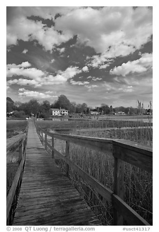 Wooden deck accross Oyster River, Old Saybrook. Connecticut, USA (black and white)