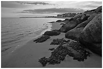 Rocks and beachfront houses, Westbrook. Connecticut, USA (black and white)