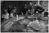 Touch pool exhibit, Mystic aquarium. Mystic, Connecticut, USA (black and white)