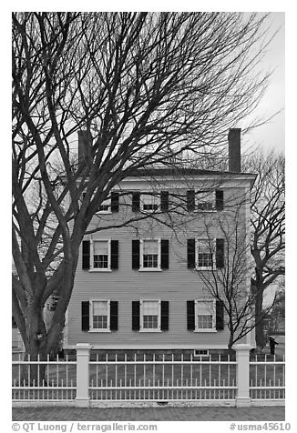 Bare trees and Hawkes House, Salem Maritime National Historic Site. Salem, Massachussets, USA (black and white)