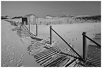 Fallen sand fence and footprints, Cape Cod National Seashore. Cape Cod, Massachussets, USA (black and white)