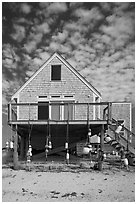 Beach house, Truro. Cape Cod, Massachussets, USA ( black and white)
