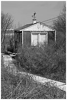 Cottage with weatherwane, Truro. Cape Cod, Massachussets, USA (black and white)