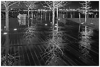 Tree reflections on wet boardwalk. Boston, Massachussets, USA (black and white)