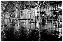 Trees reflected on boardwalk, and modern building at night. Boston, Massachussets, USA (black and white)
