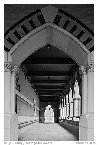 Gallery, Memorial Hall,  Harvard University, Cambridge. Boston, Massachussets, USA (black and white)