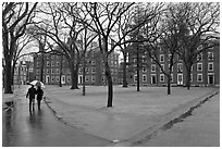 Couple with unbrella walking on Harvard University Campus, Cambridge. Boston, Massachussets, USA (black and white)