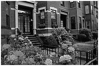 Flowers and brick houses on Beacon Hill. Boston, Massachussetts, USA ( black and white)
