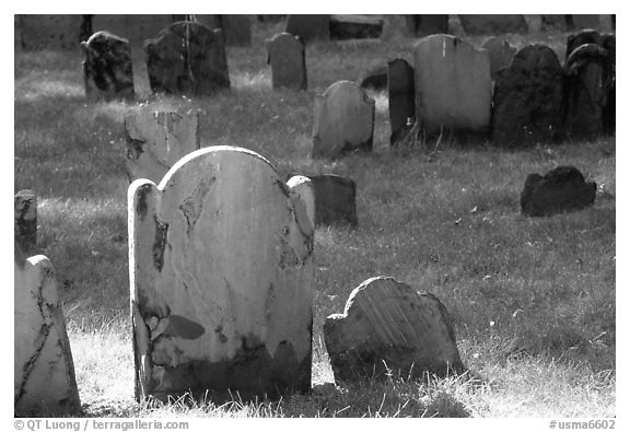 Tombstones in Copp Hill cemetery. Boston, Massachussets, USA (black and white)
