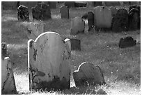 Tombstones in Copp Hill cemetery. Boston, Massachussets, USA ( black and white)