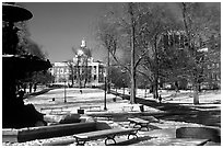 Boston common in winter. Boston, Massachussetts, USA ( black and white)