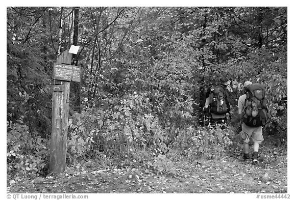 Backpackers hiking into autumn woods at Appalachian trail marker. Maine, USA (black and white)