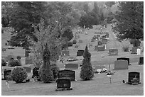 Grassy cemetery in the fall, Greenville. Maine, USA ( black and white)