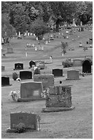 Headstones, Cemetery, Greenville. Maine, USA (black and white)