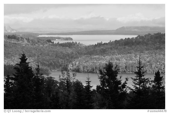 Beaver Cove and Lilly Bay in the distance. Maine, USA (black and white)