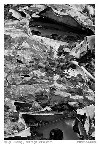 Fall leaves on wreck of crashed B-52. Maine, USA (black and white)
