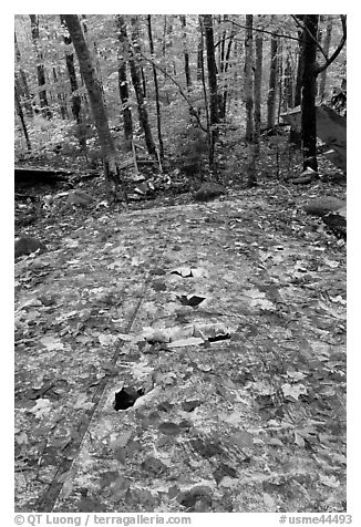 Wreckage of B-52 on Elephant Mountain. Maine, USA (black and white)