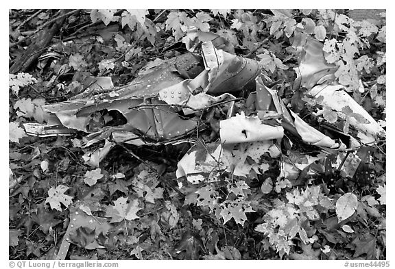Autumn leaves and cluster of mangled aluminum from B-52 crash. Maine, USA (black and white)