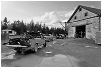 Trucks with moose lining up at checking station, Kokadjo. Maine, USA ( black and white)