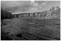 Fast-flowing Penobscot River and fall foliage. Maine, USA ( black and white)
