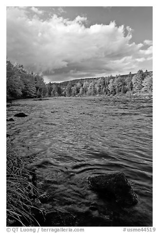 Penobscot River in autumn, late afternoon. Maine, USA (black and white)