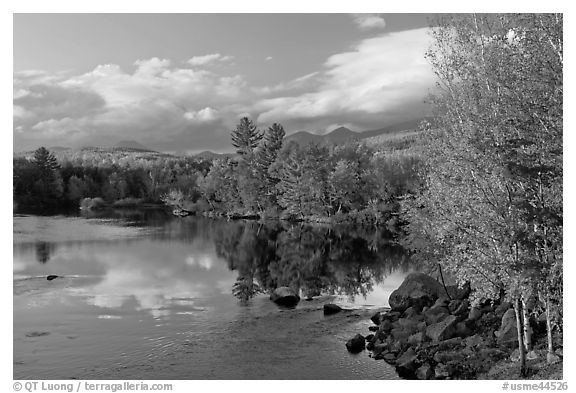 Trees in fall foliage reflected in wide  Penobscot River. Maine, USA (black and white)