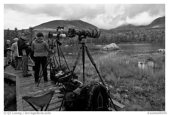Cameras set up with telephoto lenses, Sandy Stream Pond. Baxter State Park, Maine, USA (black and white)