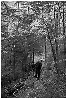 Hikers descend steep trail in forest. Baxter State Park, Maine, USA (black and white)
