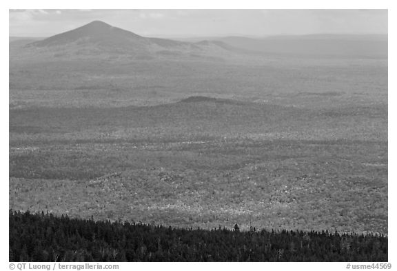Distant hills rising above forested slopes in fall foliage. Baxter State Park, Maine, USA (black and white)