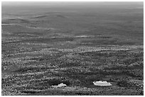 Ponds and forested landscape in autumn with spots of light. Baxter State Park, Maine, USA (black and white)