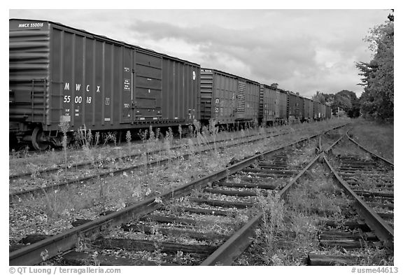 Railroad tracks and cars, Millinocket. Maine, USA (black and white)