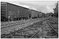 Railroad tracks and cars, Millinocket. Maine, USA ( black and white)