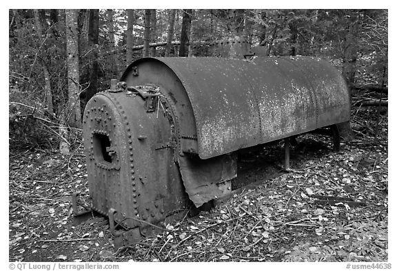 Steam engine remnant in forest. Allagash Wilderness Waterway, Maine, USA (black and white)