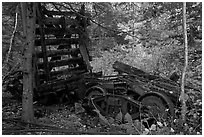 Remnants of railroad cars in the forest. Allagash Wilderness Waterway, Maine, USA (black and white)
