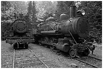 Vintage steam locomotives. Allagash Wilderness Waterway, Maine, USA ( black and white)