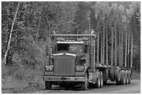 Empty log-carrying truck. Maine, USA (black and white)