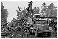 Logging truck loaded by log loader truck. Maine, USA (black and white)