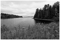 Round Pond from Johns Bridge. Allagash Wilderness Waterway, Maine, USA ( black and white)
